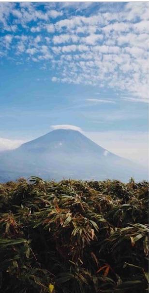 川田裕美とjiroの登山で不倫匂わせ画像2