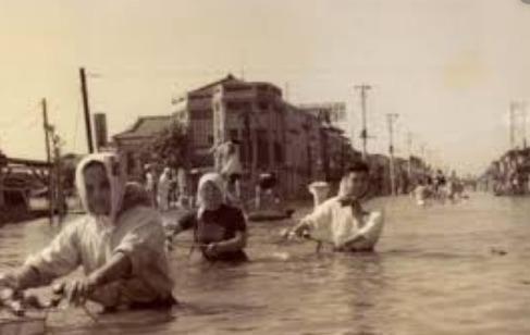 狩野川台風の被害状況2