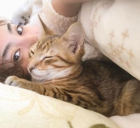 青山めぐと愛猫18匹の驚きのエピソードとは?【今夜くらべてみました】