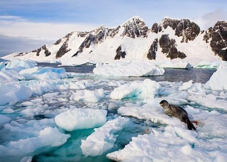 南極で初の20度超え!史上最高気温20.75度の原因は地球温暖化?2