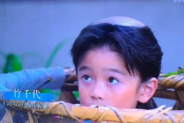 【麒麟が来る】竹千代の子役・岩田琉聖がイケメン!6