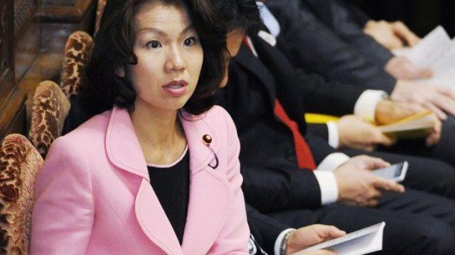豊田真由子のこのハゲー騒動とは?秘書を暴言で罵倒!別人のようなキャラ変わりに騒然