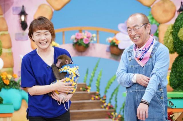 志村どうぶつ園4月4日の放送はどうなる?