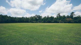 緊急事態宣言で公園はどうなる?休園措置で閉まる公園まとめ【東京都】