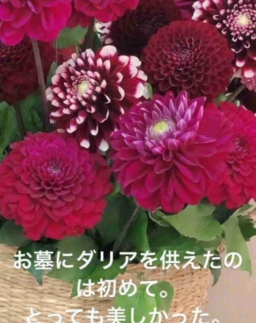 YOSHIKIへの未練がすごい工藤静香の匂わせ1:ダリアの花