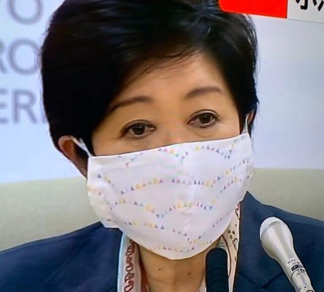 小池百合子都知事のマスクは大きい?小顔効果も狙える!5
